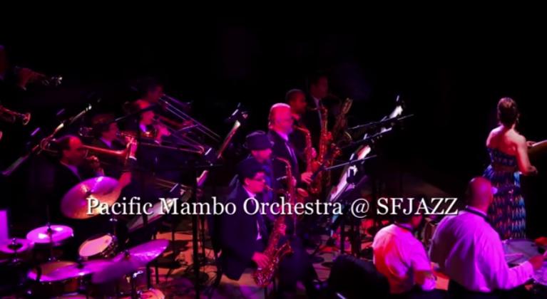 Pacific Mambo Orchestra Video 1