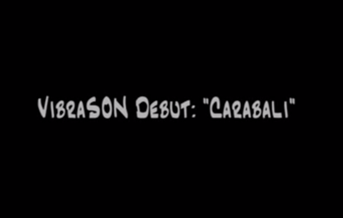 VibraSON Video 1